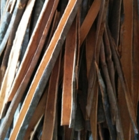 Premium Grade Cinnamon Sticks