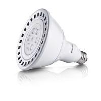 Fancy LED Lamps