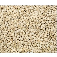 Robusta Parchment Coffee Beans