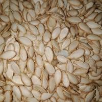 Kalabasa Squash seeds