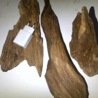 Oud Or Agar Wood