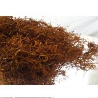 Golden Tea Herbs