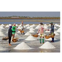 Indian Sea Salt