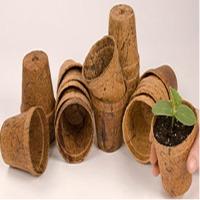 Coco Flower Pot
