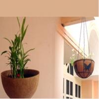 Coco Garden Articles