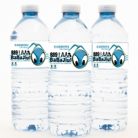 Splash Natural Mineral Water 500 Ml Bottle