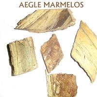 Aegle Marmelos Extract