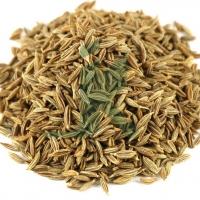 Cuminum Cyminum Extract,(Cumin seeds)