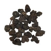 Morinda Citrifolia Extract , Noni Extract