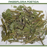 Passiflora Incarnata, Passion Flower Extract