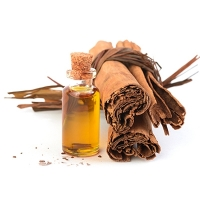 Ceylon Cinnamon Bark Essential Oil