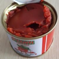Tomato Paste 28-30% Brix