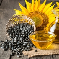 title='Sunflower Oil'
