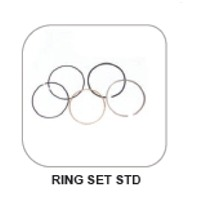 Tvs Apache 160 Ring Set Std