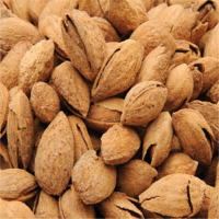 Chilean Almonds