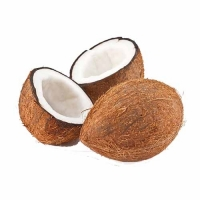 Indian Fresh Coconut Suppliers, Manufacturers, Wholesalers
