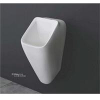 Urinal & Pan