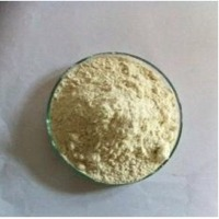 Fasthydration Guar Gum Powder