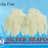 Salted Jelly Fish
