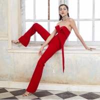 Sexy Cocktail Jumpsuit