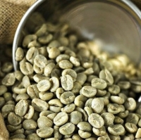 Raw Robusta and Arabica Coffee Beans