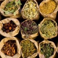 Organic Medicinal Herbs