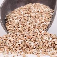 Whole Grain Buckwheat