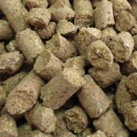 Organic Wheat Bran Pellets (Animal Feed)
