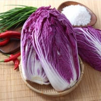 Red Cabbage Anthocyanins Cabbage 10 Kgs