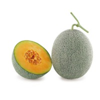 Aroma Melon (Hybrid) Seeds