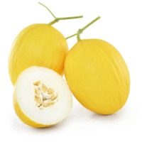 Puma Melon (Hybrid) Seeds
