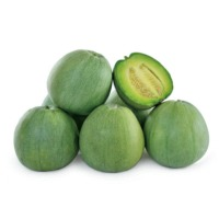 Jade Melon (Hybrid) Seeds