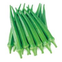 Greennie Okra (Hybrid) Seeds