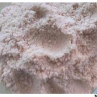 Moringa Seed Powder