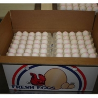 Fresh Chicken White Shell Eggs