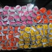 Button Rose Orange