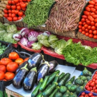 Vegetables : Manufacturers, Suppliers, Wholesalers and