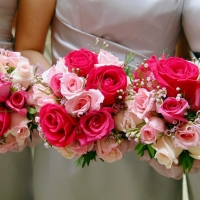 Get Flowers Daily  Supplier from India  View Company