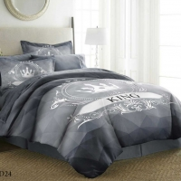 Bedding Set Sports Double 6pcs