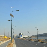 Scenery Complementary LED Street Light