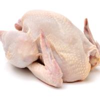 Grade A Halal Frozen Whole Chicken