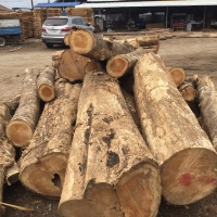 Round Teak Wood