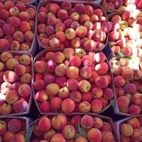 Fresh Red Sweet Peaches