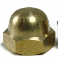 Oil Seal Brass Nuts