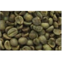 Washed Arabica S16