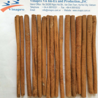 Stick Cassia Vietnam