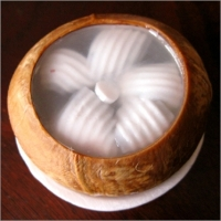 Nata De Coco or Coconut Jelly