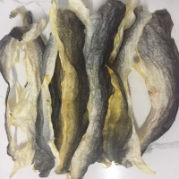 Dried Fish Skin