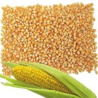 title='Animal Feed Yellow Corn'
