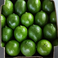Fresh Persian Lemon